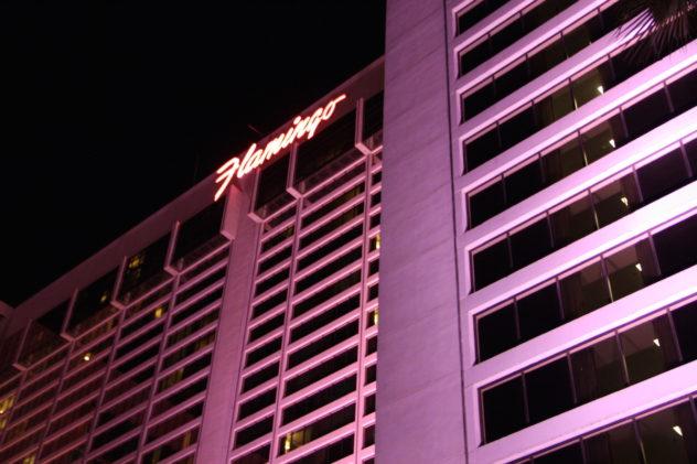 flamingo casino hotel las vegas