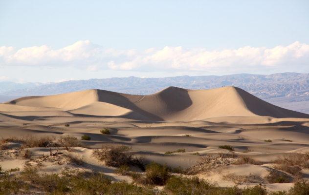 mesquite sand dunes california