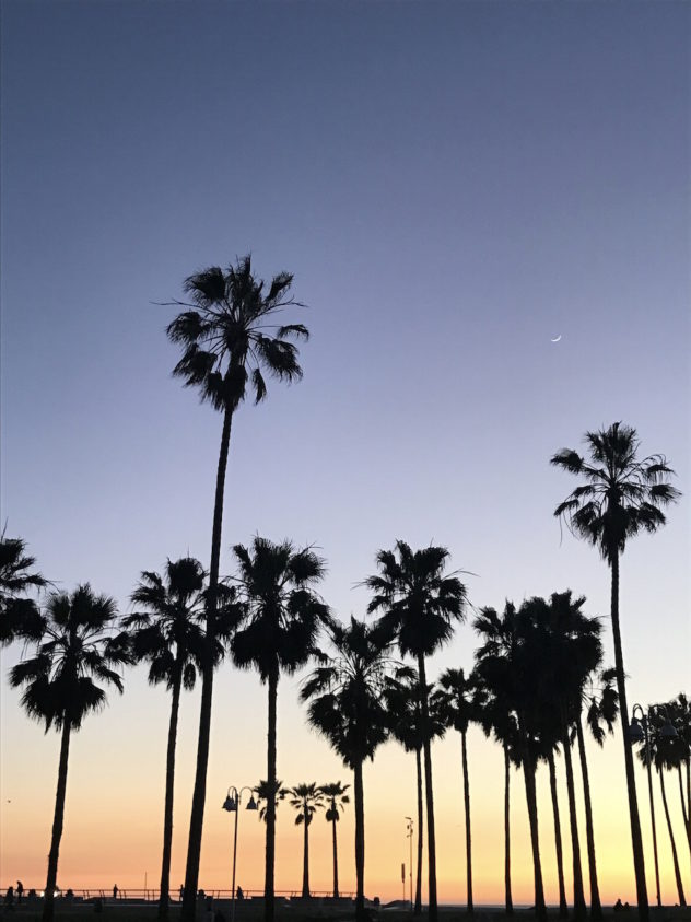 sunset palms venice beach