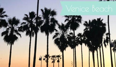 venice beach teaser fertig